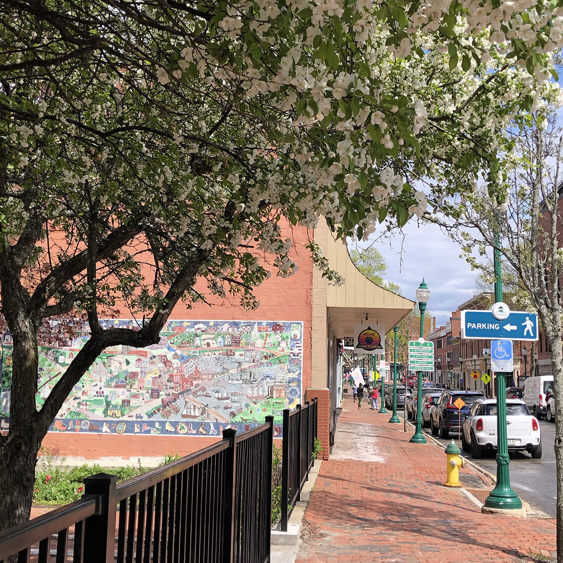 apple blossoms on water st